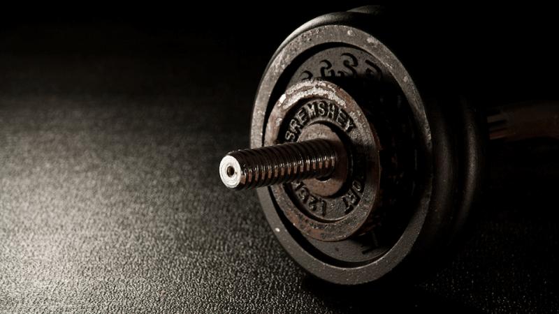 Die wichtigsten Trainingsprinzipien